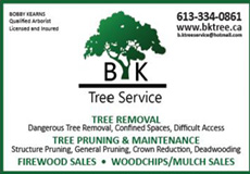 B.K. Tree Service